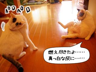 Shirokuro0902_6