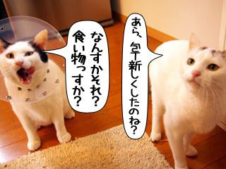Shirokuro0902_7