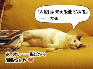 Shirokuro0902_8