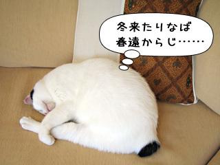 Shirokuro0903_1