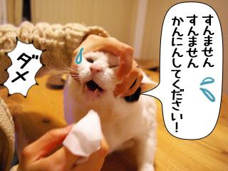 Shirokuro0903_10