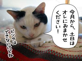 Shirokuro0903_2