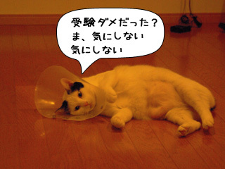 Shirokuro0903_3