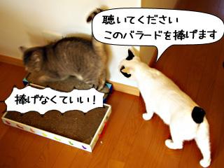 Shirokuro0904_3