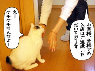 Shirokuro0904_5