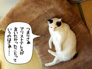 Shirokuro0904_7