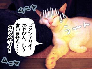Shirokuro0904_2