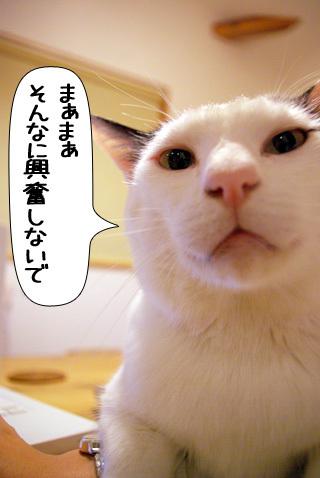 Shirokuro0906_1