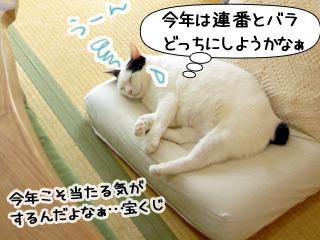 Shirokuro0906_2