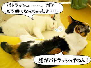 Shirokuro0906_5