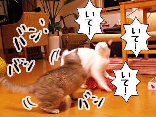 Shirokuro0907_1_2