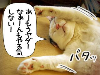 Shirokuro0907_2