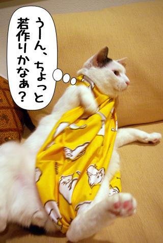 Shirokuro0907_3