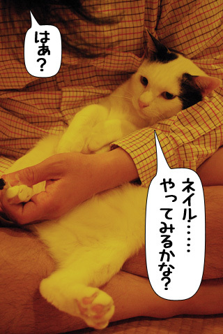 Shirokuro0907_5