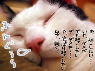 Shirokuro0907_6