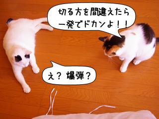Shirokuro0907_7