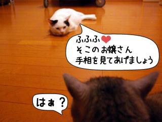 Shirokuro0907_8