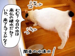 Shirokuro0907_9