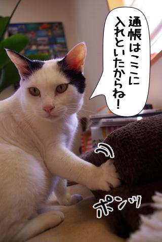 Shirokuro0908_3