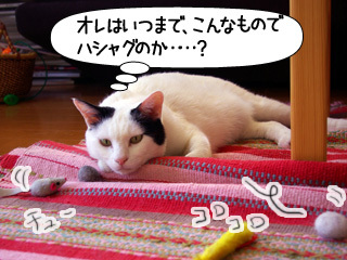 Shirokuro0908_4