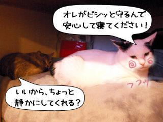 Shirokuro0908_6