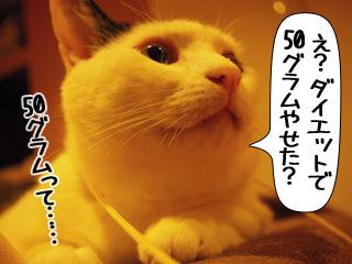Shirokuro0908_7