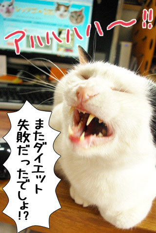 Shirokuro0909_1