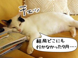 Shirokuro0909_11
