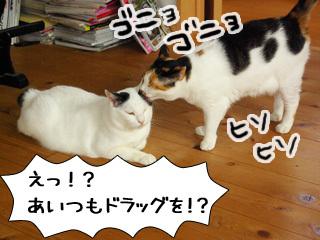 Shirokuro0909_2