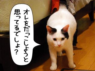 Shirokuro0909_7