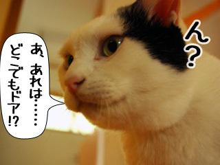 Shirokuro0909_8