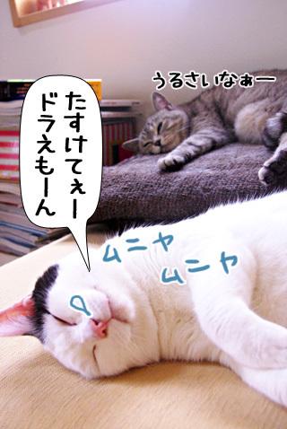 Shirokuro0909_9