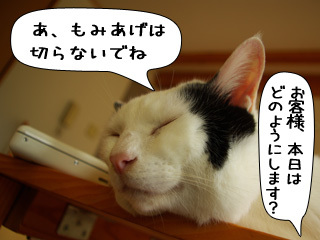 Shirokuro0910_10