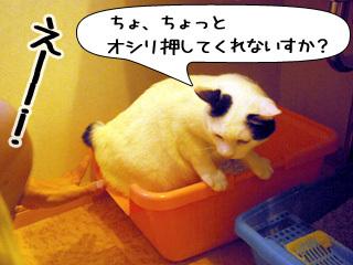 Shirokuro0910_4