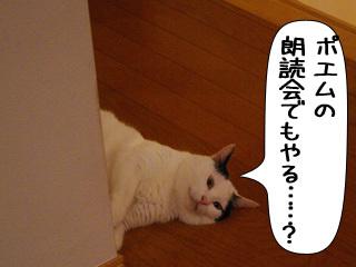 Shirokuro0910_5