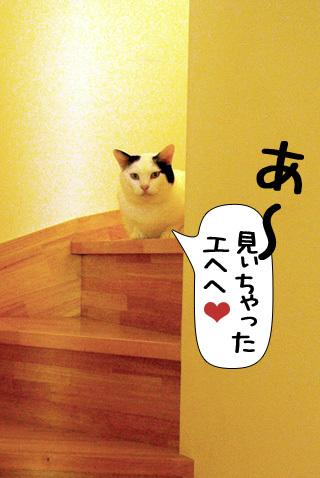 Shirokuro0910_6