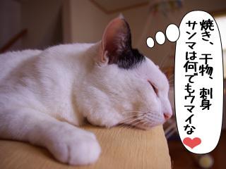 Shirokuro0911_10
