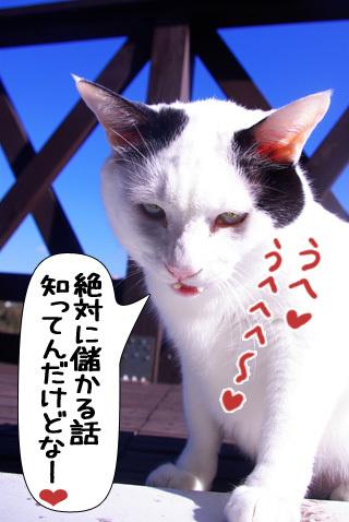 Shirokuro0911_2