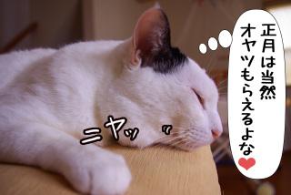 Shirokuro0912_10