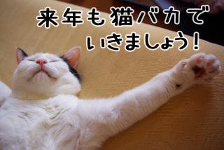 Shirokuro0912_12