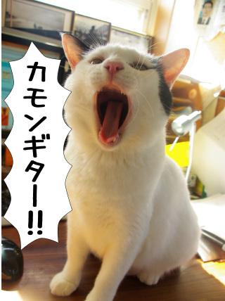 Shirokuro0912_3