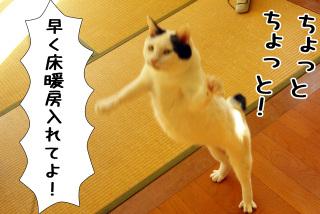 Shirokuro0912_4