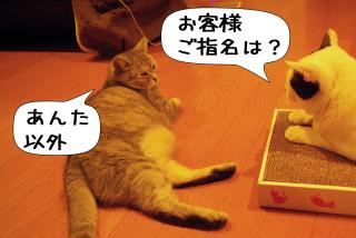Shirokuro0912_5