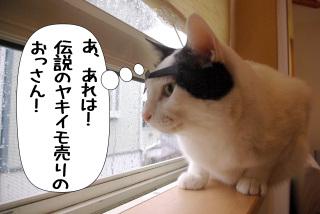 Shirokuro1002_1