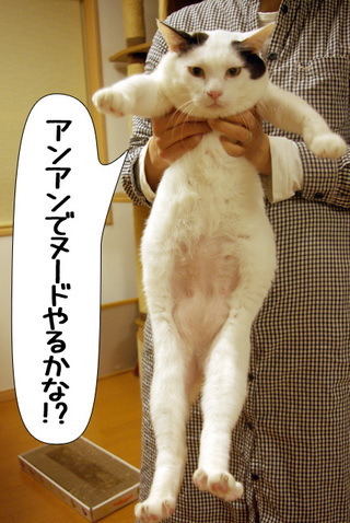Shirokuro1002_2