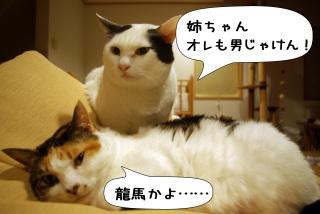 Shirokuro1002_5