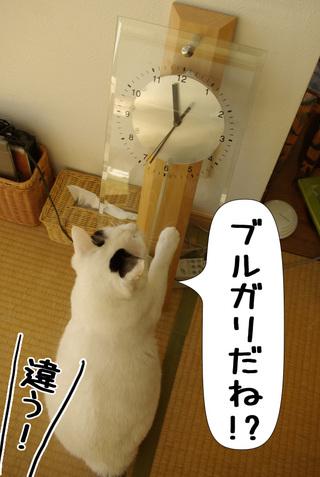 Shirokuro1002_6_2