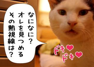 Shirokuro1003_4