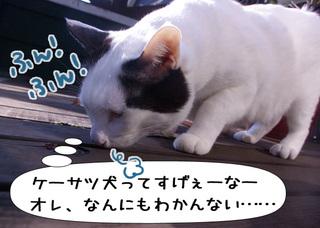 Shirokuro1003_8
