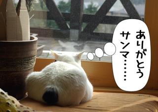 Shirokuro1004_1